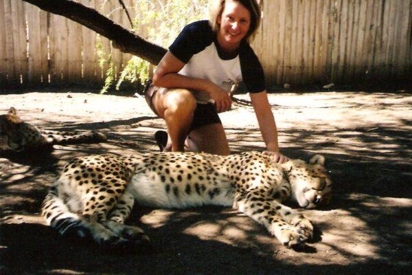 Stroking-Cheetah-SA